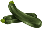 zucchini_detail.png